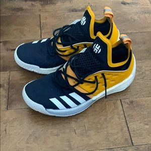 CUSTOM Adidas James Harden vol2 basketball sneaker
